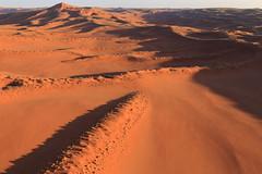 Sand worms (Nicolas Rénac) Tags: aerial aerialphotography aerialview vueaérienne above plane sand dunes orange sunrise sun desert namibia early morning namib désert landscape paysage sossusvlei africa dune helicopter hélicoptère sable hill erg namibnaukluftnationalpark namibnaukluft düne