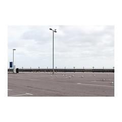 Gorleston Pier (John Pettigrew) Tags: horizon lines tamron d750 nikon streetlamp birds empty documentary seagulls imanoot angles topographics car spaces deserted gorleston park norfolk johnpettigrew documenting