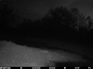 2019-03-25 20:33:25 - Crystal Creek 2