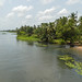 Bank of the river Volta