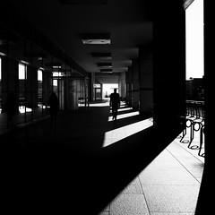 Walker (Sean Batten) Tags: london england uk europe canarywharf docklands eastlondon streetphotography street blackandwhite bw city urban fuji fujifilm x100f light shadow