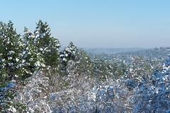Apremont gorges (hbensliman.free.fr) Tags: fontainebleau forest white snow landscape winter nature pentax pentaxart pentaxk1