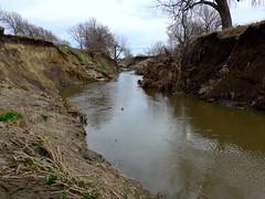 Erosion along south Logan Creek, Wayne (ali eminov) Tags: wayne nebraska creeks logancreek