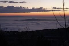 IMG_9694 (Selena & Danny) Tags: trieste canon 5dmk2 nebbia fog campi di golf samyang 85mm t15