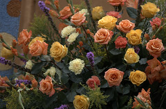Flowers On A Float (Scott 97006) Tags: roses plants flowers colorful pretty float parade beauty bouquet