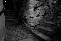 Night in Tübingen (manfredkober) Tags: tübingen treppen gasse nacht kopfsteinpflaster