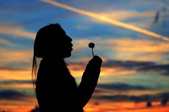 you have one wish ... (Wackelaugen) Tags: dandelion blowball silhouette sky canon eos photo photography stephan wackelaugen