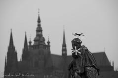 Sant'Antonio e Duomo di Praga (frillicca) Tags: 2016 bn bw biancoenero bianconero blackandwhite blackwhite duomo duomodipraga janoldřichmayer karlověmostě katedrálasvvíta marble marmo monochrome monocromo nikkor nikkor18300mmf35 nikon nikond300 november novembre panorama pontecarlo praga prague praha santantoniodapadova sculpture scultura statua statue