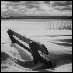 Winter on the Volga / Зима на Волге (dmilokt) Tags: природа nature пейзаж landscape лес forest дерево tree река river dmilokt чб bw черный белый black white d3 ins nikon d850