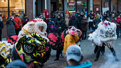 The little piggy and the dragons. (kuntheaprum) Tags: chinatownboston chinesenewyearcelebration yearofthepig sony a7riii tamron 2470mm f28 festival parade dragon firework