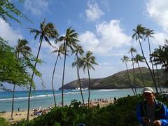 Hanauma Bay sanctuary in shallow, warm waters surrounding the main Hawaiian islands (Trinimusic2008 -blessings) Tags: trinimusic2008 judymeikle nature coconuttrees palmtrees sky clouds march 2019 blueskies hanaumabay
