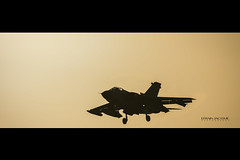 Lugwaffe Panavia Tornado, TLP Albacete (ES), Febrero 2019. (EFRAIN A. JACOME Q.) Tags: tornado germany tlp albacete aircraf aircraft aviation military air aérea force sunset contraluz