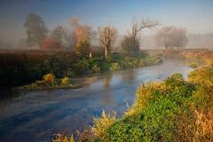 Autumn morning (fotoswietokrzyskie) Tags: sony a850 landscape autumn mist fog morning dawn river carl zeiss 2470 mm grass tree sky water
