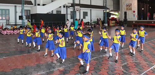 "Mini Sports Meet 2018-19 • <a style=""font-size:0.8em;"" href=""http://www.flickr.com/photos/141568741@N04/32503994287/"" target=""_blank"">View on Flickr</a>"