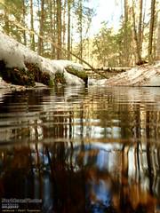 Helvetinjärvi Nationalpark (PeepeT) Tags: helvetinjärvinationalpark helvetinjärvenkansallispuisto talvi winter puro stream