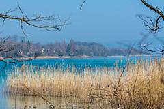 20190324-10-56-38 (andreas_rothmund) Tags: badenwürttemberg bodensee deutschland mainau konstanz