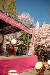 CherryBlossomDC2019-663.jpg (carlton.colter) Tags: kizuna cherryblossomdc taiko taikotakeover sakurataikofest washingtonmonument washington dc usa