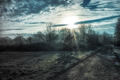 cold morning (ro_ha_becker) Tags: landscape landschaft winter sun sonne himmel sky gegenlicht contrejour fujix100