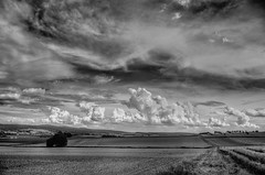 German Landscape (Klaus Ficker --Landscape and Nature Photographer--) Tags: landscape landschaft germany deutschland clouds wolken kentuckyphotography klausficker canon eos5dmarkiv bw blackandwhite sky himmel schwarzundweiss