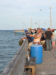 Corpus Christi - Are You Looking at Me ?? (Drriss & Marrionn) Tags: corpuschristi texas usa water sea bay ocean coast coastline people beach waterfront bobhallpier fish fishing bait pier padreisland fishermen
