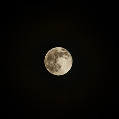 Super Snow Moon (northdevonfocus) Tags: fullmoon supermoon supersnowmoon moon lunar nightsky star stargazing