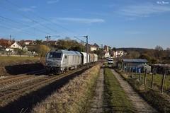 Prima (2) (Marc_135) Tags: bb75000 bb750109 cfl cflcargo bethoncourt soleil train gris bleu montbéliard mulhouse