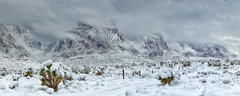 Winter Storm (magnetic_red) Tags: snow snowcapped mountains weather clouds desert landscape panorama redrocknationalconservationarea joshuatrees americanwest