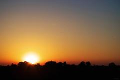 Couchant (Atreides59) Tags: nord france ciel sky sun soleil coucher coucherdesoleil sunset jaune yellow rouge red arbres trees arbre tree nature pentaxart pentax k30 k 30 atreides atreides59 cedriclafrance