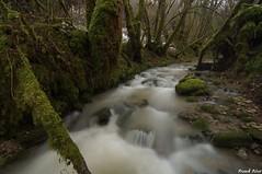 Bief de Vaux - Nans Sous Sainte Anne (francky25) Tags: bief de vaux nans sous sainte anne ruisseau franchecomté doubs hiver fonte pluie