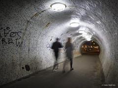 Under the Chain Bridge (Csaba Vásárhelyi) Tags: hungary budapest magyarország city város night éjszaka olympus omdem10mk2 omd architecture építészet