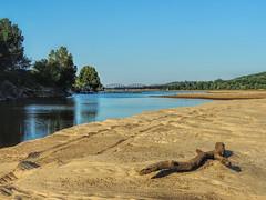 Canadian River (clarkcg photography) Tags: river sand bank sandbar driftwood dredge bridge canadianriver summer texture texturaltuesday