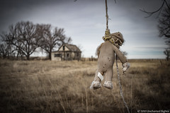 Hangman's Bear (Uncharted Sights) Tags: hangmans bear toy teddy stuffed hang hanging creepy spooky horror freaky abandoned forgotten colorado ghost town urbex rurex unchartedsights canon 80d 24mm