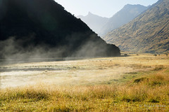 20190207-02-Evaporating dew in morning sun (Roger T Wong) Tags: 2019 nz newzealand rogertwong sel24105g sony24105 sonya7iii sonyalpha7iii sonyfe24105mmf4goss sonyilce7m3 southisland westmatukitukivalley bushwalk evaporation hike landscape mist outdoors tramp trek valley walk