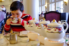 Dylan enjoying Afternoon Tea at the Empress Hotel-February 2019 (Dave Byng) Tags: people portrait canada winter britishcolumbia