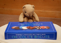 Keep back, I'll handle this! (Blund.Bear) Tags: 2019 365blundsof2019 blund bears biscuits chocolate food