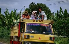 Sumatra, near Berastagi, another way of transport (blauepics) Tags: indonesia indonesien southeast asia asien südostasien sumatra sumatera island insel berastagi city locals einheimsiche people menschen transport truck lkw road strase