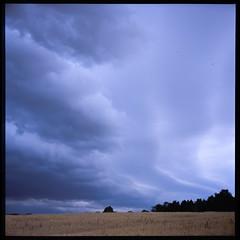 First rain (Jens Jacob - Hej!) Tags: v700 6x6 provia fujirdpiii rollei slide perfectionv700 mediumformat mellemformat tlr zeiss epsonperfectionv700 120 fuji film rolleiflex28e