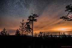 Feel it! (MIKAEL82KARLSSON) Tags: stairway stars stjärnhimmel stjärnor natur night natt nightshot nattfoto naturbild nature nightphoto naturshot sverige sweden sony skog sigma 20mm f14 art dalarna grängesberg gränges himmel sky view utsikt mikael82karlsson