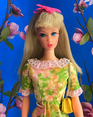(The Snow Angel) Tags: tnt jedress japaneseexclusive barbie