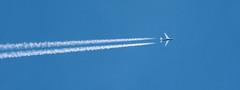 Bluebird (crusader752) Tags: weststaraviation private boeing 767238er b767 2tssa dotspotting contrail contrails