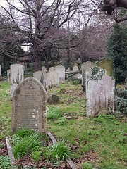 Sunday, 23rd, Through the graveyard (tomylees) Tags: ramsgate kent graveyard sunday 23rd december 2018 project 365