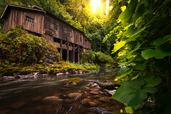Cedar Creek Grist Mill (kephart_kyle) Tags: cedar creek eplored fall foliage giest green kephart kyle mill river state stream washington