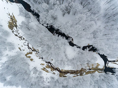 Go with the flow (Jurgis Kreilis) Tags: white winter winterwonder winterland above latvia nature river flows blizzar snow snowstorm aerialphotography dronephotography trees forest shapes patterns