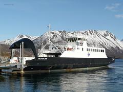 """""""Hålogaland"""" (OlafHorsevik) Tags: hålogaland torghattennord thn gullesfjorden refsnes flesnes ferge ferga ferry ferja ferje"""