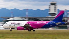 Airbus A320-232 HA-LWD Wizz Air (William Musculus) Tags: airport spotting aviation plane airplane basel mulhouse freiburg bsl mlh eap euroairport lfsb wizzair wzz w6 a320200 william musculus