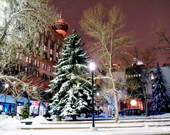 Downtown Calgary (Jane Olsen) Tags: calgarytower buildings offices restaurant teatro trees snow winter outdoor lamp streetlight night