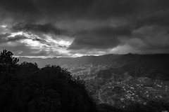Cloudy (Rico the noob) Tags: dof landscape nature d500 mountains city outdoor madeira clouds trees urban 1120mm monochrome tree published forest house outlook sky 2017 blackandwhite bw 1120mmf28