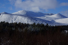 Lochnagar (steve_whitmarsh) Tags: aberdeenshire scotland scottishhighlands highlands mountains hill winter snow trees forest landscape topic cairngorms