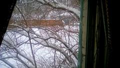 Snowstorm! - HWW (Maenette1) Tags: snowstorm branches window neighborhood menominee uppermichigan happywindowswednesday flicker365 allthingsmichigan absolutemichigan projectmichigan michigansnow