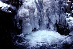 Frozen fall: Taruhime watarfall, Nagano,Japan (gudonjin) Tags: winterbeauty winter snow japan waterfall icicle